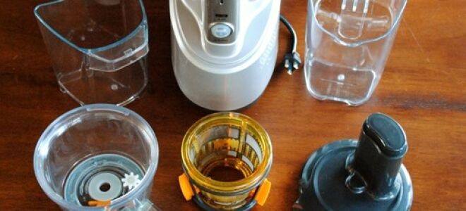 Product Review: Breville Juice Fountain Crush Masticating Slow Juicer