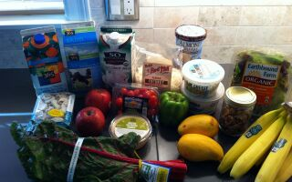 Project: Food Budget–Week 33