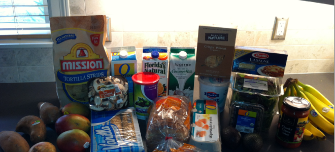 Project: Food Budget–Week 37