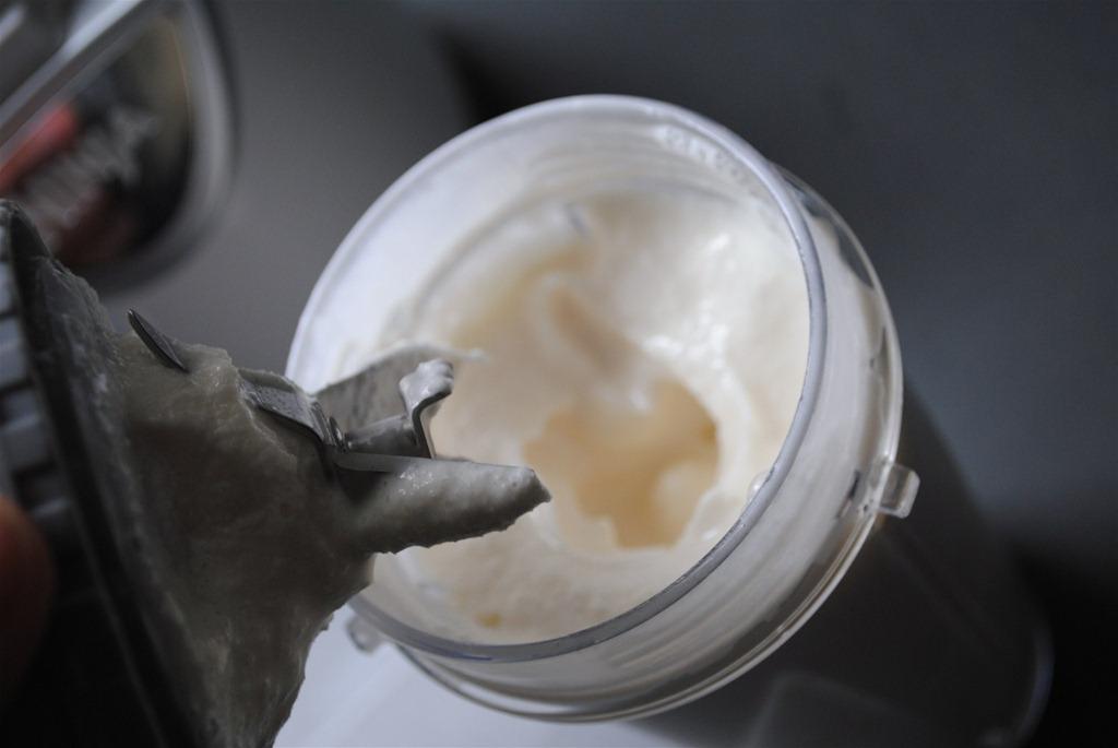 Vanilla Ice Cream Ninja1