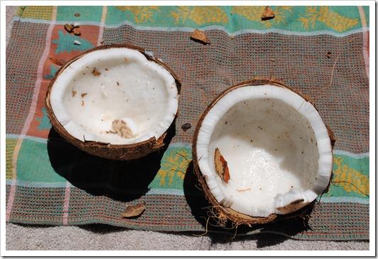 coconut_milk2