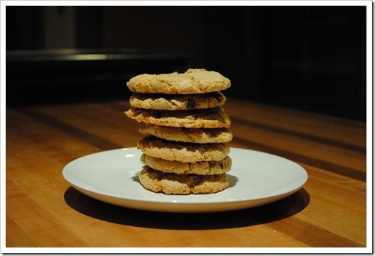 ninja_cookie_dough_8