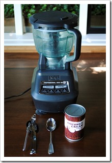 Making Coconut Whipped Cream in the Ninja Blender | Test Kitchen Tuesday