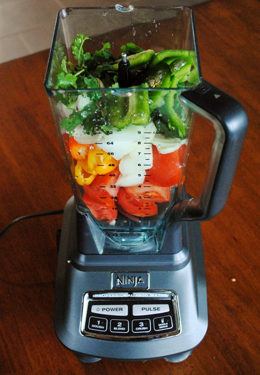 Reader Request: Homemade Salsa in the Ninja Blender | Test ...