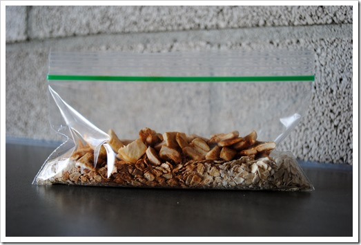 Make Your Own Instant Oatmeal Packets | Test Kitchen Tuesday