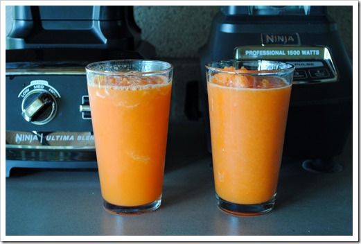 Making Whole Food Carrot Juice in the Ninja Blender | Test Kitchen Tuesday