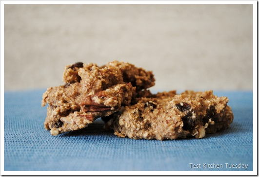 Clean Oatmeal Raisin Cookies | Test Kitchen Tuesday
